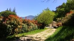 Le gîte / the independant cottage