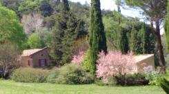 le printemps s'éveille
